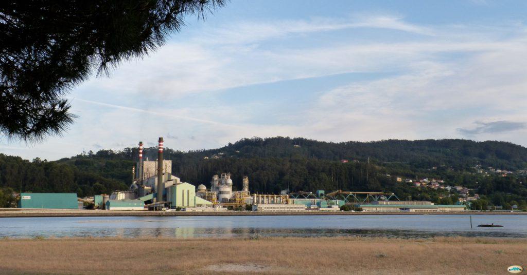La Audiencia Nacional desestima el recurso del Concello de Pontevedra sobre la concesión de la biofábrica de Ence-Pontevedra